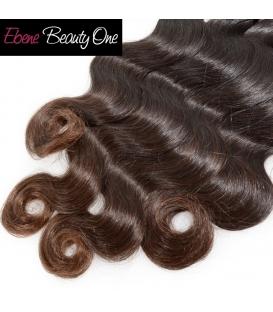 Ombre Hair mixe